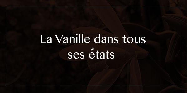 Histoire de Vanille, 100% Biologique - la vanille dans tous ses états