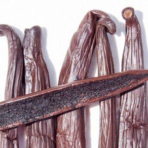 Histoire de Vanille, 100% Bio - fagot de vanille 2