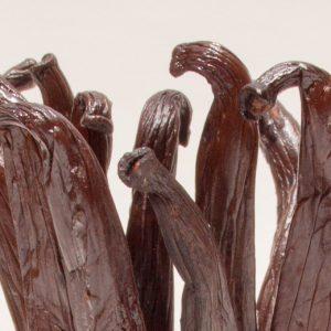 Histoire de Vanille, 100% Bio - fagot de vanille